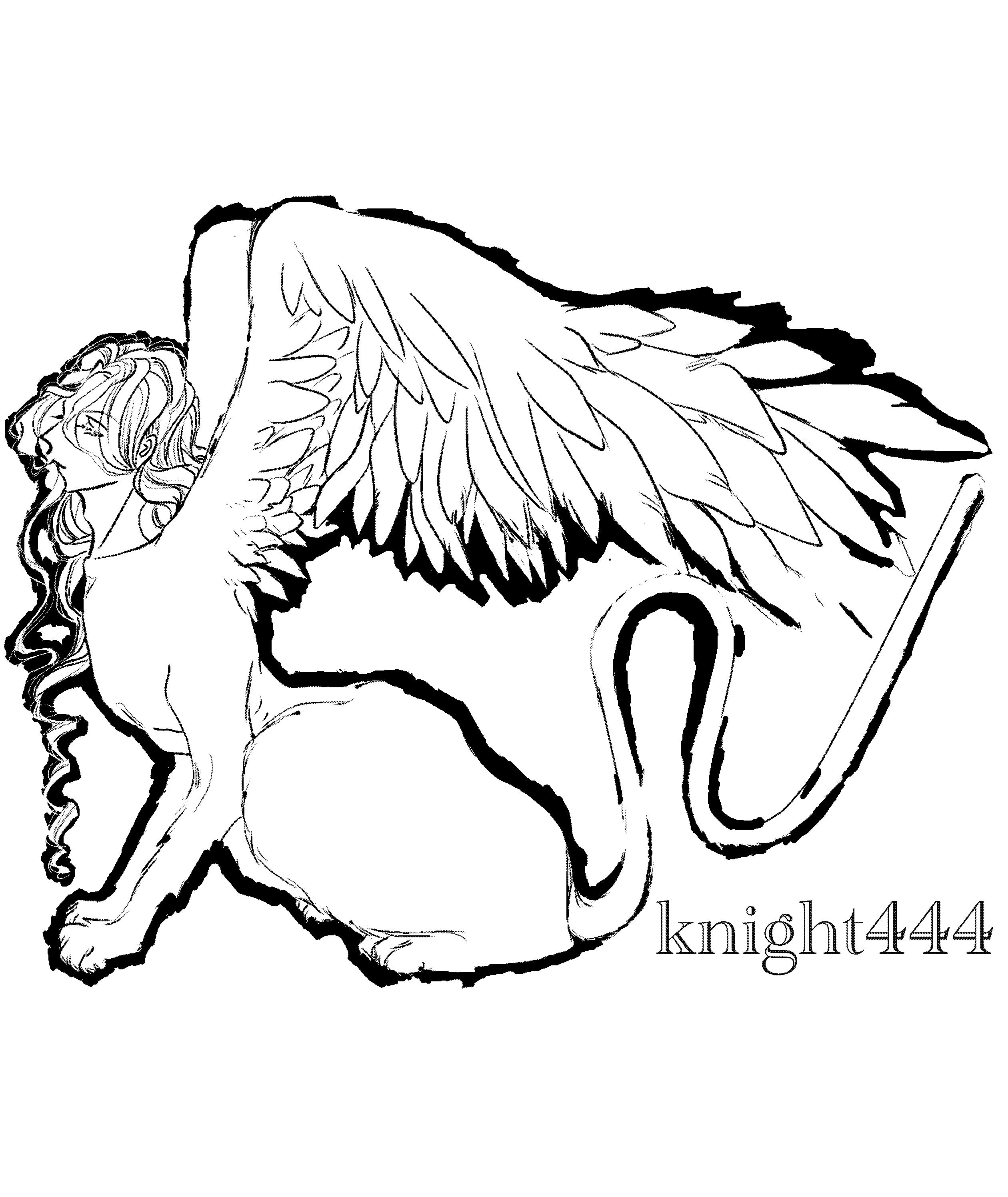 knight444