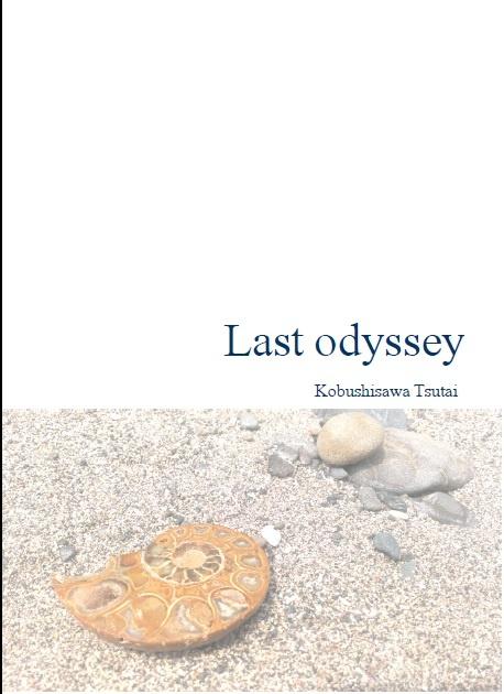 Last odyssey