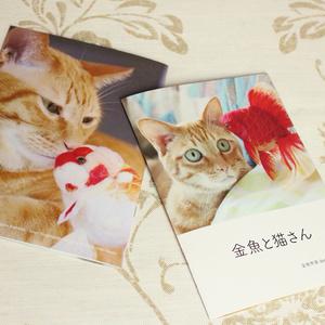 金魚と猫のフォトブック