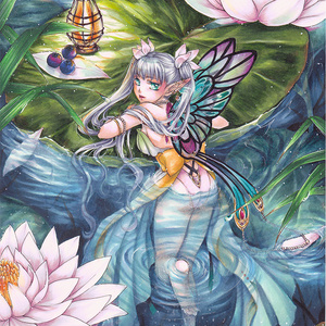 【原画】睡蓮の蝶