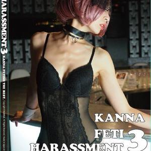 「FETI HARASSMENT 3」ROM