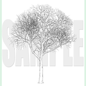 yl03_dead_tree_01ab-02ab.zip