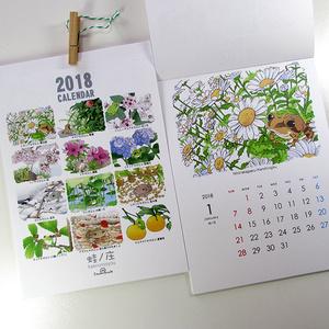 2018年カエルカレンダー[蛙暦]