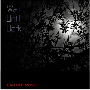 Wait Until Dark〜can not move〜