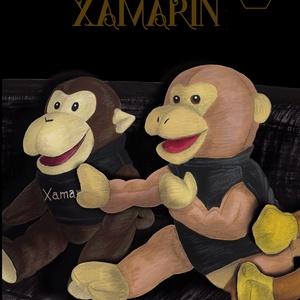Essential Xamarin -陰/Yin-