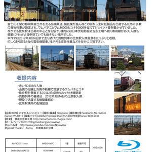 岳南鉄道 比奈駅の突放入換