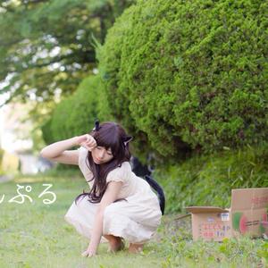 ☆2月限定セール☆【ROM】オリジナル猫「ねこかぶり」