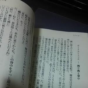 【へし燭♀小説】ステレオ