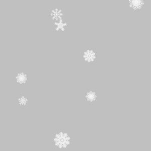 iPhoneケース/冬