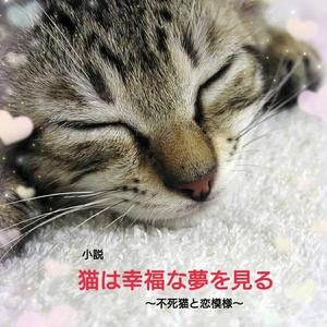 猫は幸福な夢を見る~不死猫と恋模様~