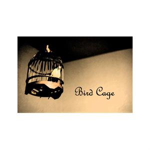 小説「Bird Cage」