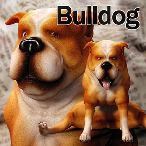 CL-Bulldog for Poser8Dog