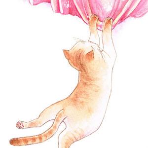 猫とカーテン ポストカード