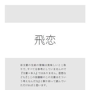 飛恋(文アル太中)