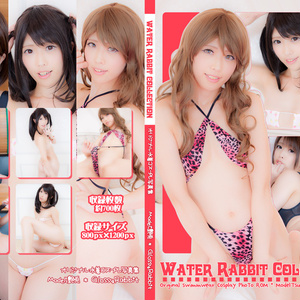 WaterRabbitCollection
