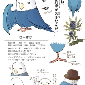 CHARACTERS BOOK~そらにうたう~