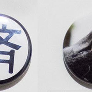 マグネット(要・済・猫・月)