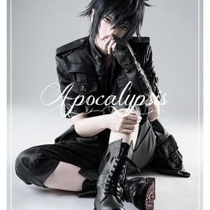【一般通販】《Apocalypsis 》FFXV写真集2冊セット