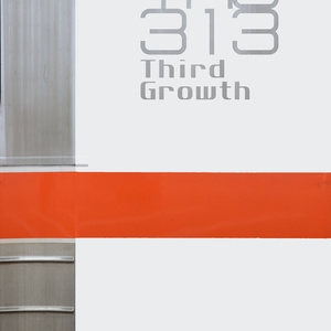 The 313 - Third Growth