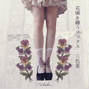 花園を纏うソックス:三色菫