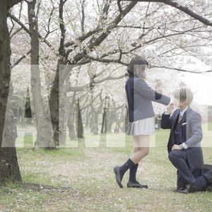 【倉庫】へしさに写真集(夢むらさき序章)