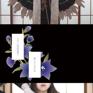 【新刊】極!へしさに写真集