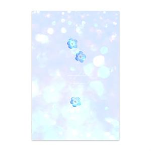 青いネモフィラ ポストカード