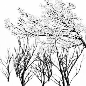 枝マルチブラシ(黒)_コミスタ・クリスタ兼用素材