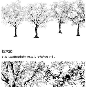 もみじ樹木ブラシ・コミスタクリスタ兼用素材