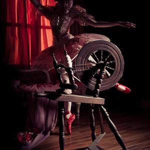 バレエ×創作写真集vol.4 『眠れる森の美女』