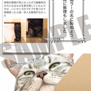 刀剣ニャン舞 参