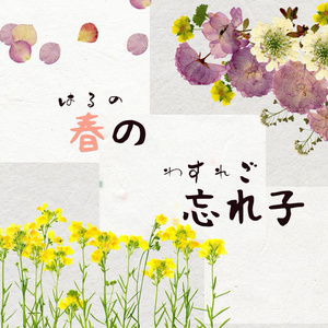 七十二候 ~花暦の章~