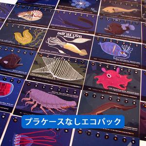 2017深海生物図鑑カレンダー(プラケースなしエコパック)