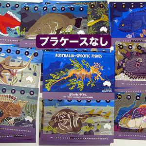2018オーストラリア固有魚カレンダー(エコパック)