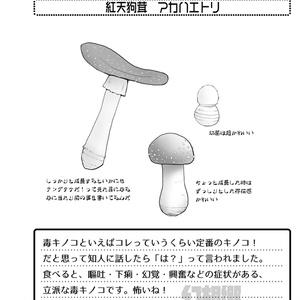 幻想郷キノコ図鑑弐