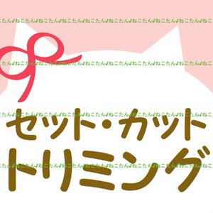 *・WEB素材イラスト画像・*【デジコン】動物カットanimalセット髪型トリミングgirl女の子りぼんboy男の子ハットお帽子