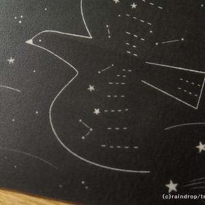 トレーシングペーパーカード「星の鳥」
