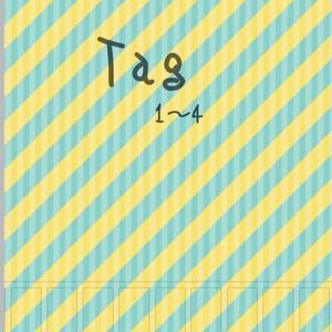 Tag1~4
