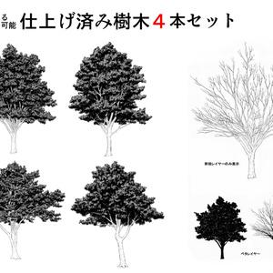仕上げ済み樹木4本セット