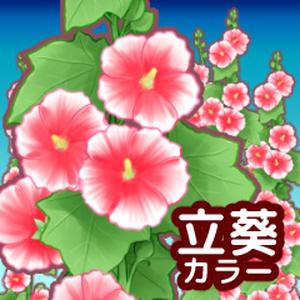 立葵ブラシセット カラー
