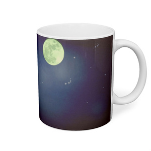 夜空のにゃんこカップ