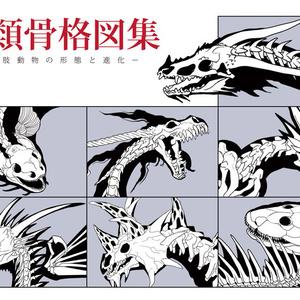 竜類骨格図集
