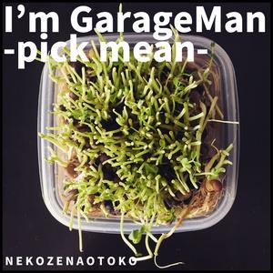 I'm GarageMan -pick mean-