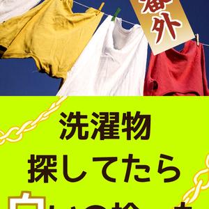 洗濯物探してたら白いの拾った 後日談/番外集(再録+書き下ろし)