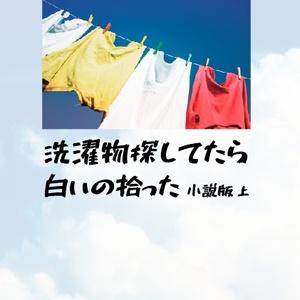 【冬コミ新刊】洗濯物探してたら白いの拾った 小説版 上(完全書き下ろし)
