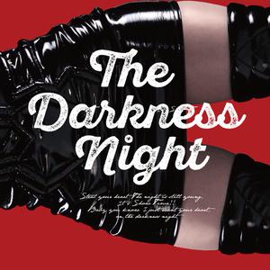 【C92新刊】The Darkness Night/シャドウレディ写真集