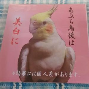 あぶらをお鳥紙