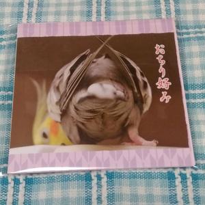 NEW あぶら鳥紙(おちり好み)