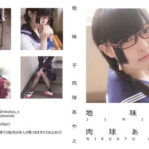 地味子(PDF版)