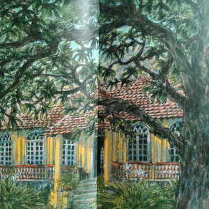 THE INDO-PORTUGUESE HOUSE